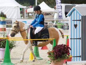 """フランス定番の子供の習い事は? 日本では珍しい""""乗馬""""が堂々の1位"""