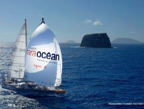 地球環境を守るために世界を航海する「タラ号」、子供たちからポスターデザインを募集