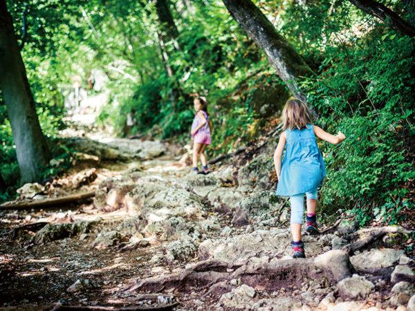 都会からの移住が増加中? 自然の中で子供を育てる「森のようちえん」の取り組み