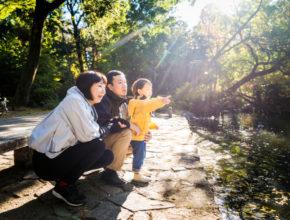 親子キャンプで何をする? 自然を体験できるアクティビティ8つ