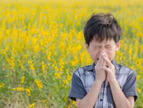 【医師が解説】子供の花粉症対策の方法は? 食事やスキンケアで気をつけたいポイント