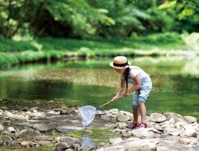 生きる知恵や力を身につける「キャンプ体験」5選! 親が気をつけるべきポイントは?
