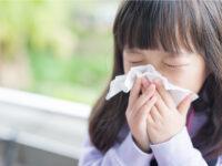 その咳や鼻水、「隠れ秋花粉」が原因かも!? 家族の対策に頼れるガイドライン登場